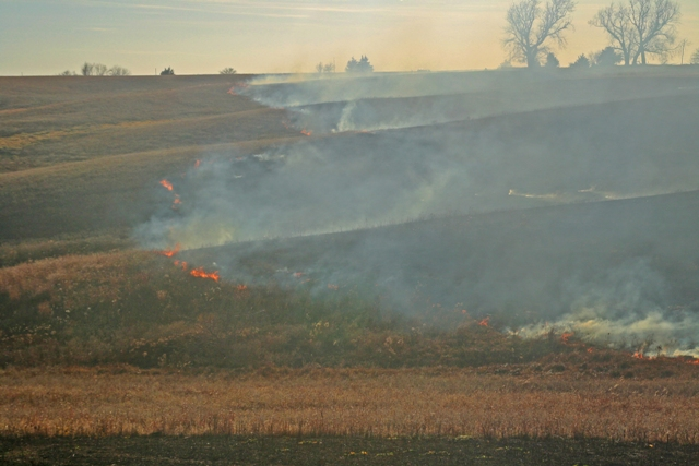 Advancing Burn Line