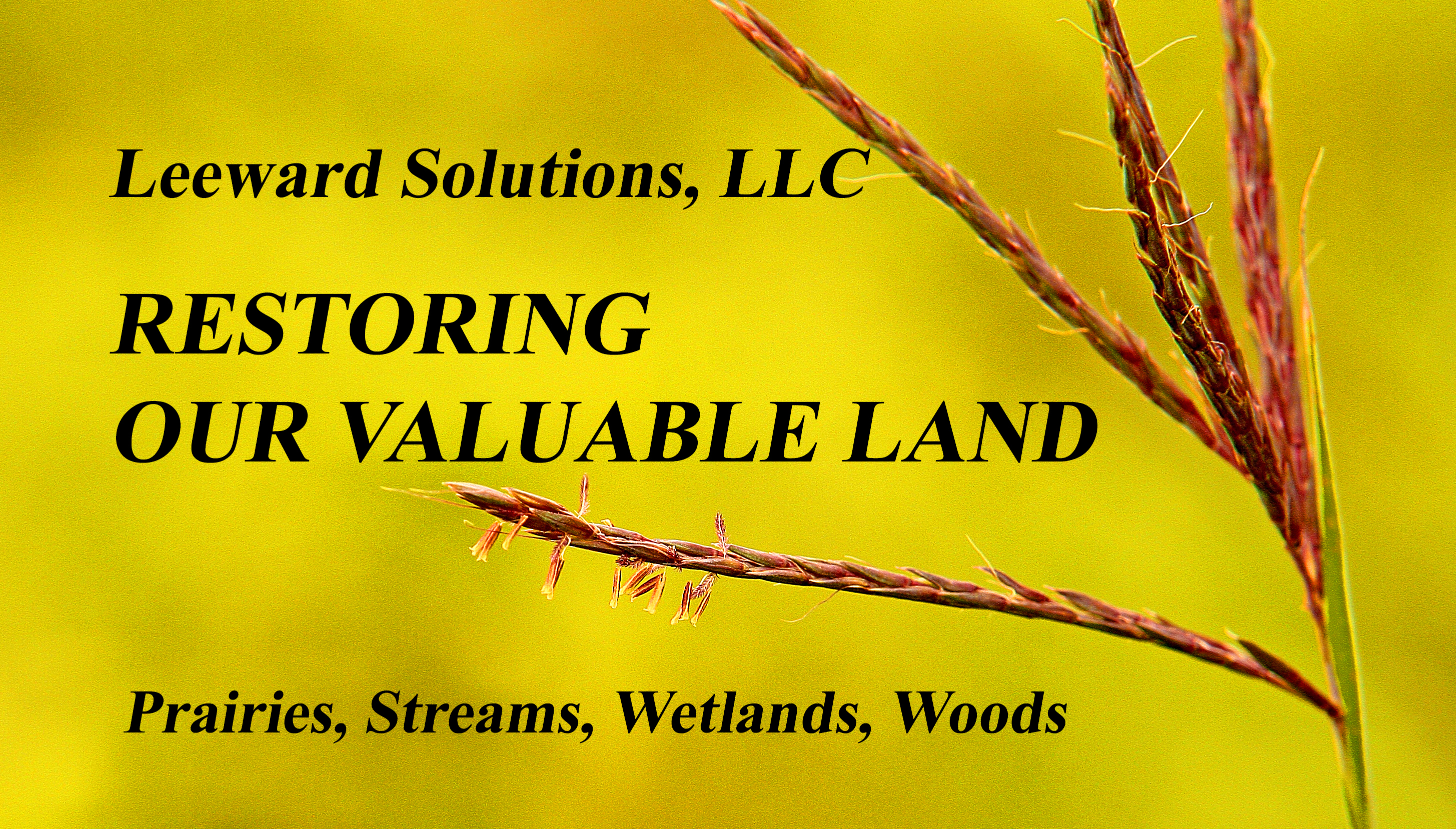 LEEWARD SOLUTIONS, LLC